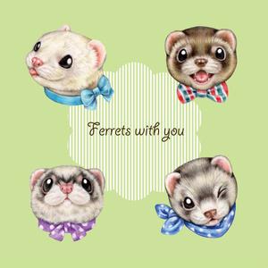 フェレットタオルハンカチ / Ferret mini towel