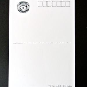 フェレットポストカードセット~フェレット with コーヒーブレイク~ / Ferret Post card Set