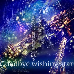 さよなら願い星、また会う時は流星の涙を