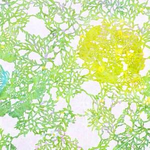 染織作品 PC壁紙