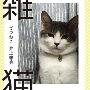 雑猫(ざつねこ)PDFバージョン